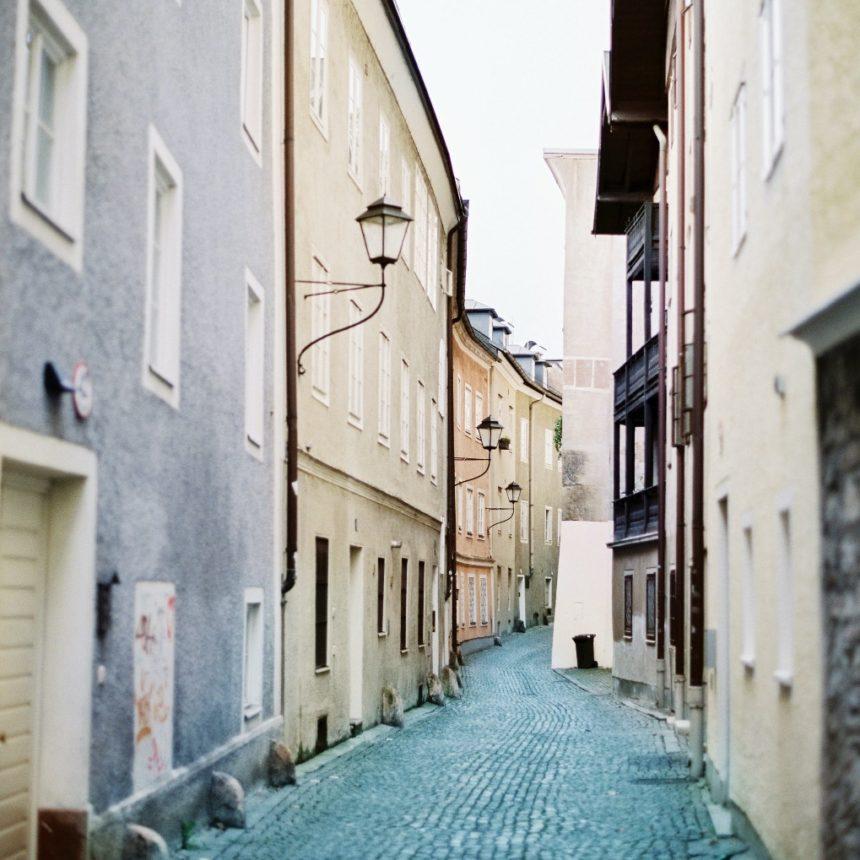 (Love Birds in Salzburg).